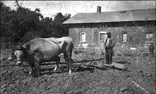 Steklinek- przed czworakami w latach 30-tych XX w. foto z Archiwum SP w Czernikowie.jpg